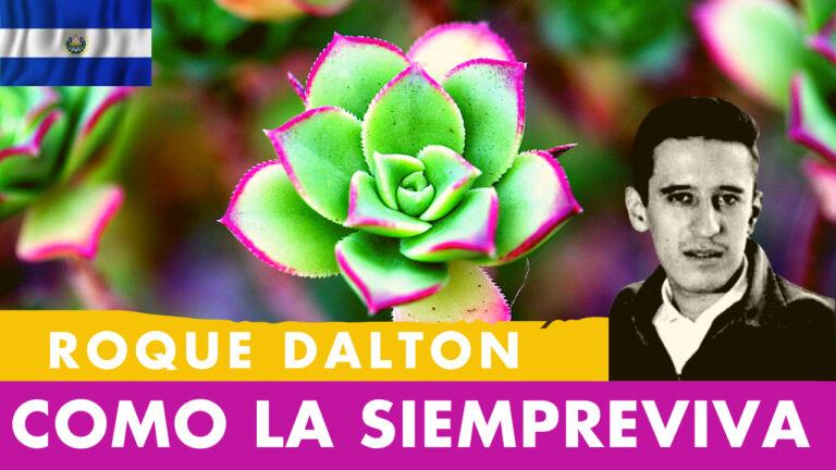 Lee más sobre el artículo Como La Siempreviva Roque Dalton