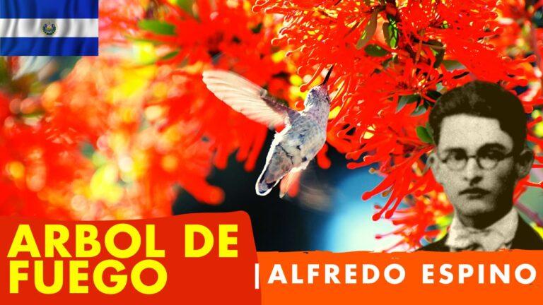 Lee más sobre el artículo Árbol de Fuego Alfredo Espino