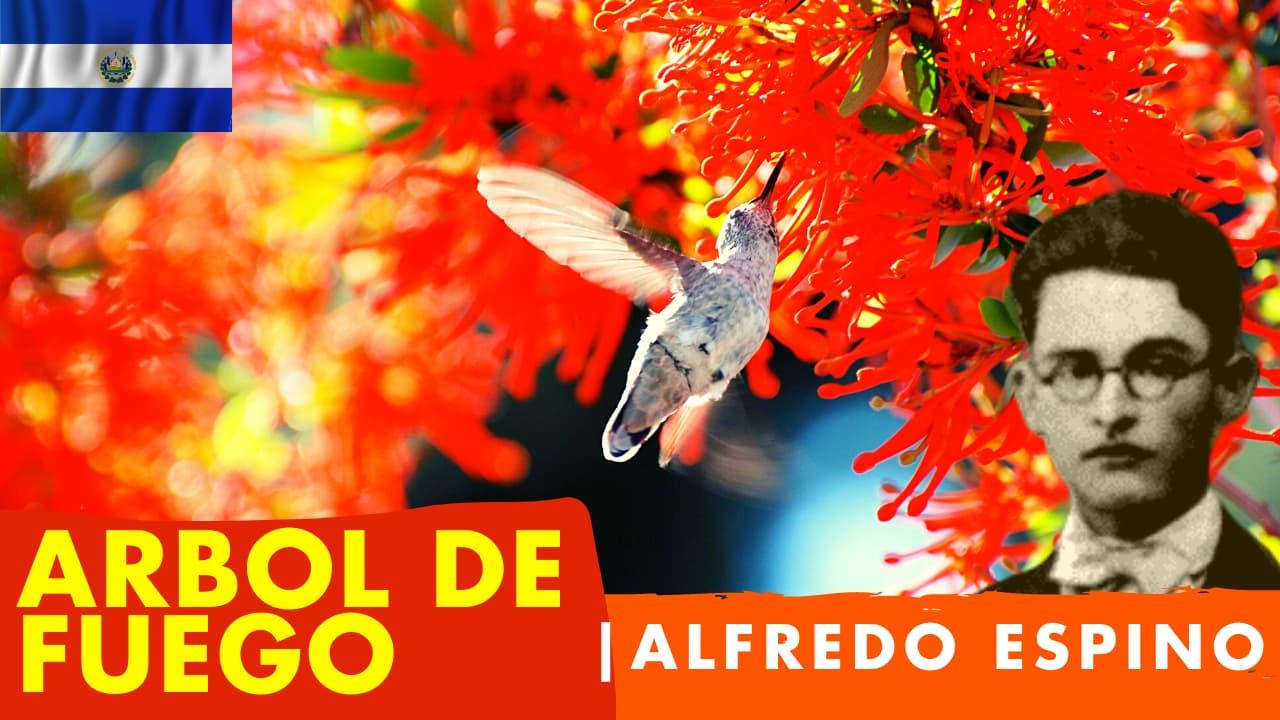 En este momento estás viendo Árbol de Fuego Alfredo Espino