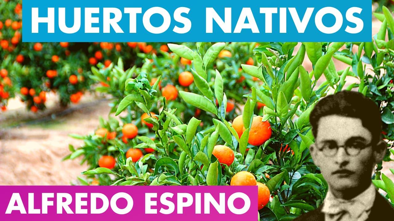 En este momento estás viendo Huertos Nativos Alfredo Espino