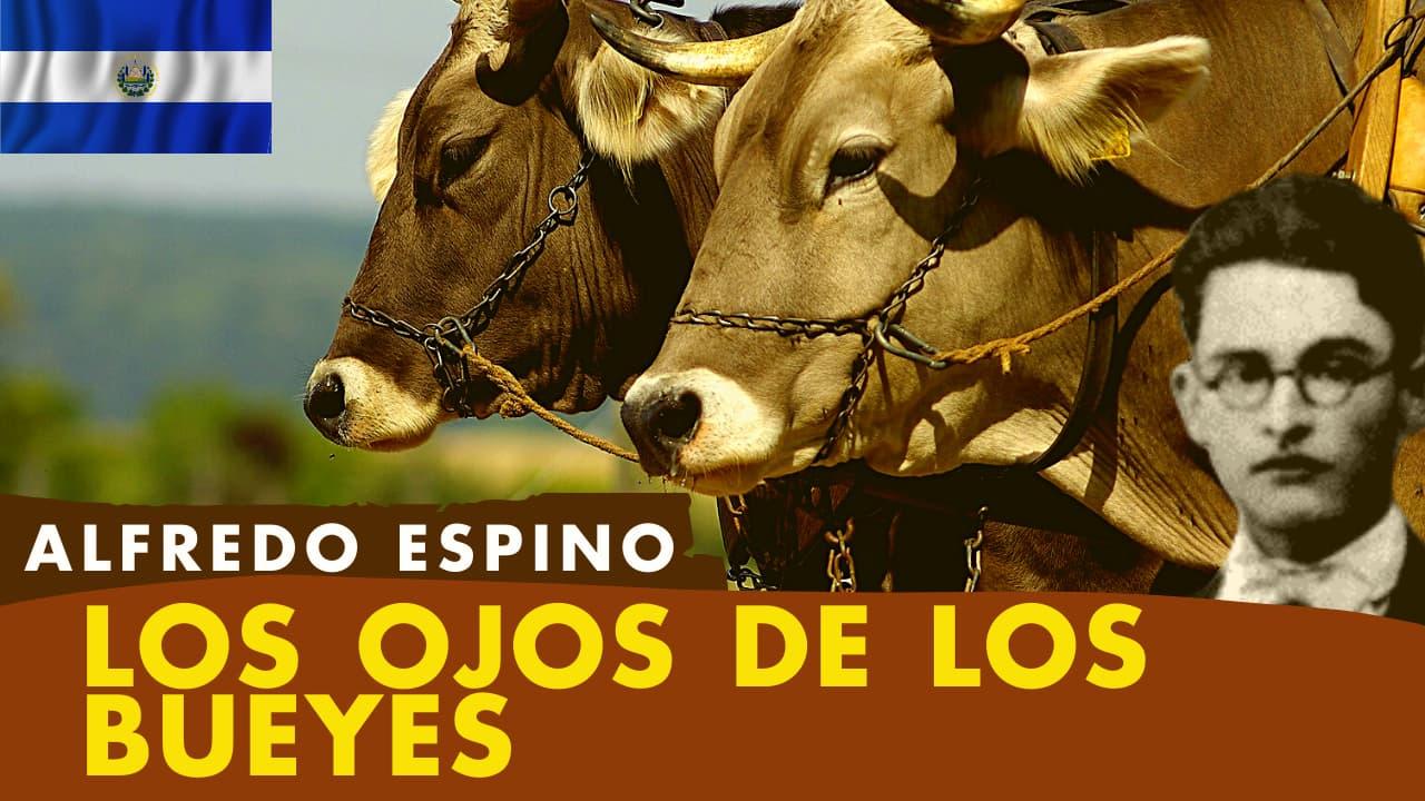 En este momento estás viendo Los Ojos de los Bueyes Alfredo Espino